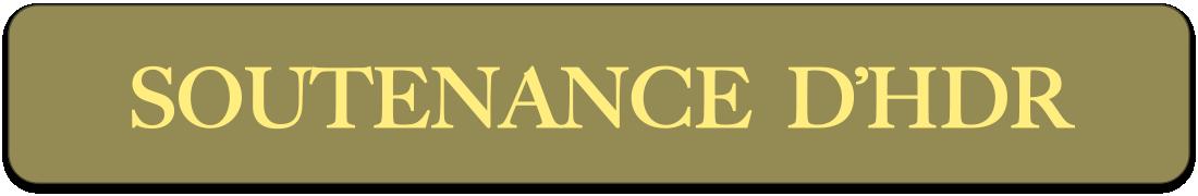 bandeau-soutenance-hdr.png